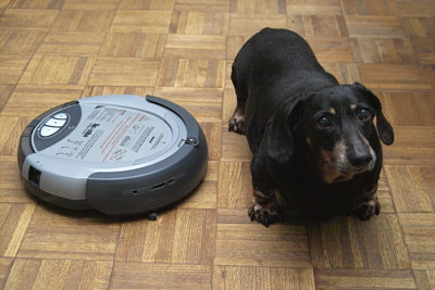 Tremendous Is Your Pet Threatened By Your Roomba Tell It Off One Download Free Architecture Designs Scobabritishbridgeorg